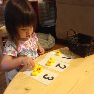 duck numbers