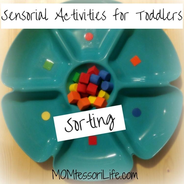 Sensorial Activities for Toddlers - Sorting