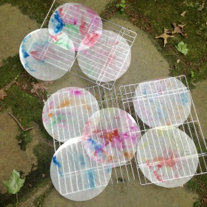 coffee filter butterflies drying