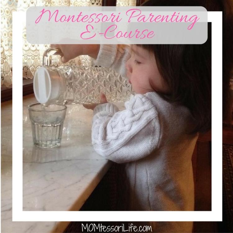 Montessori ParentingE-Course (4)