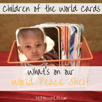 What's On Our World Peace Shelf -- Children of the World Cards