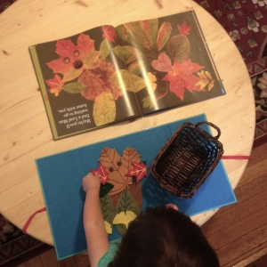 leaf-man-story-basket