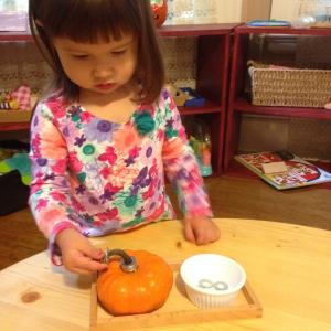 pumpkin-ring-post-2