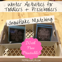 Winter Activities for Toddlers & Preschoolers -- Snowflake Matching [With Free Printable!]