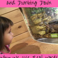 Stop the Baby Talk and Dumbing Down -- Why We Use Real Words with Our Kids