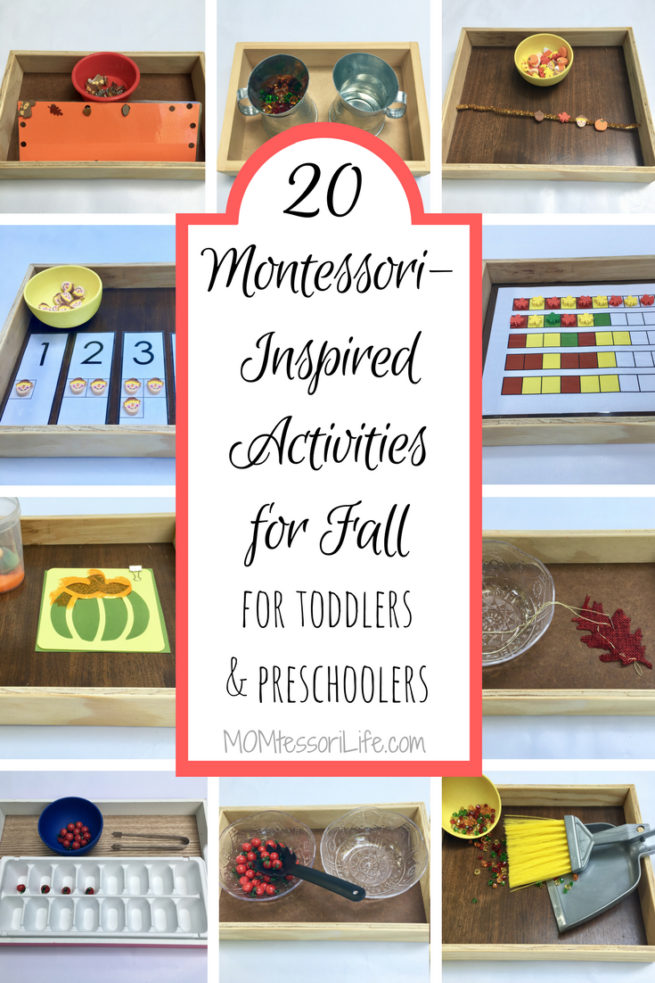 20 Montessori Inspired Activities For Fall For Toddlers