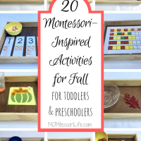 20 Montessori-Inspired Activities for Fall for Toddlers and Preschoolers
