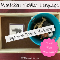 Montessori Toddler Language -- Object-to-Picture Matching with Free Printable