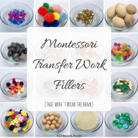 Montessori Transfer Work Fillers (That Won't Break the Bank)