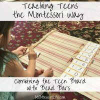 Teaching Teens the Montessori Way -- Combining the Teen Board with Bead Bars