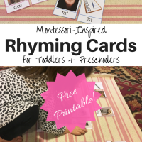 Montessori-Inspired Rhyming Cards for Toddlers & Preschoolers [Free Printable!]
