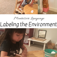 Montessori Language:  Labeling the Environment