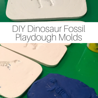 DIY Dinosaur Fossil Playdough Molds