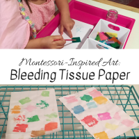 Montessori-Inspired Art:  Bleeding Tissue Paper