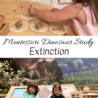 Montessori Dinosaur Study:  Extinction