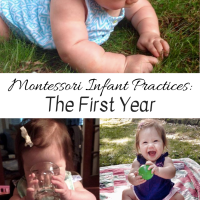 Montessori Infant Practices -- The First Year