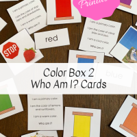 Color Box 2 Who Am I? Cards -- Free Printable!
